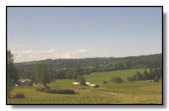 East Willamette Valley countryside
