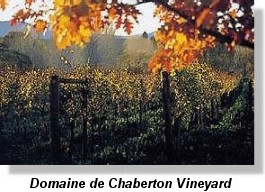 Fraser Valley B.C. vineyard - Domaine de Chaberton